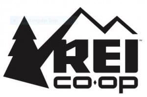 REI 2016 Logo